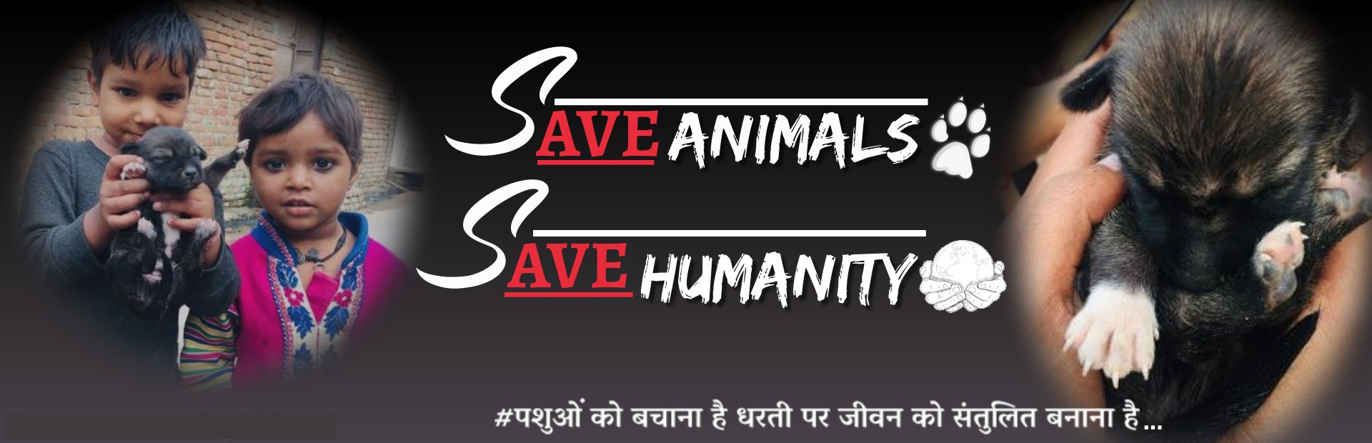 save_animals